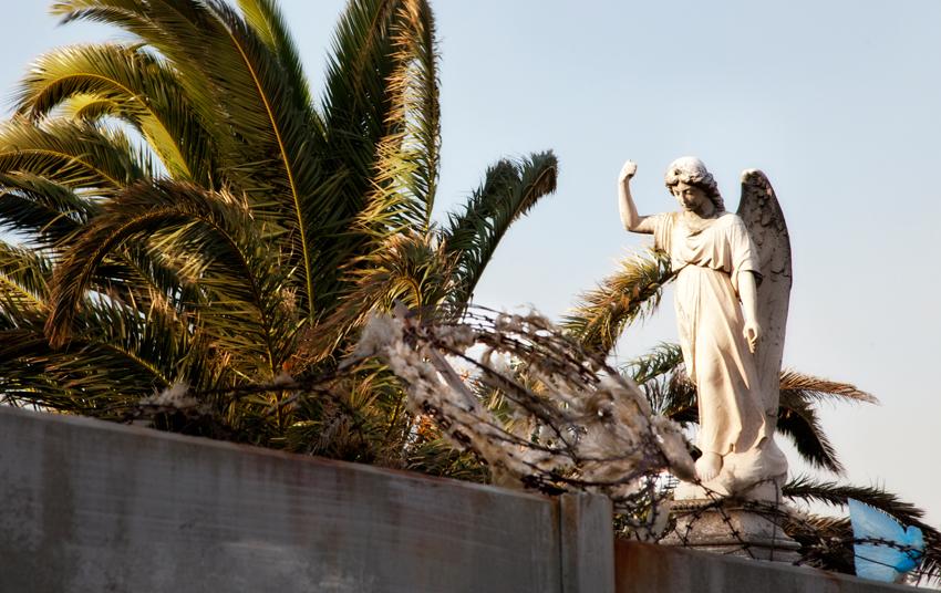PiaObscura Fotografie Urban Friedhof